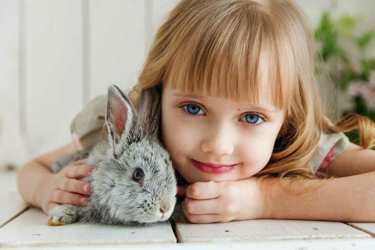 Czy królik jest dobrym zwierzakiem dla dziecka?