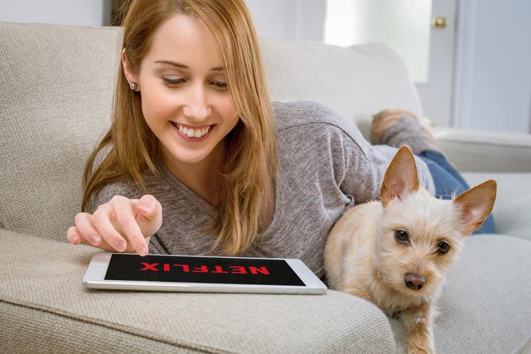 zagraniczne filmy o psach
